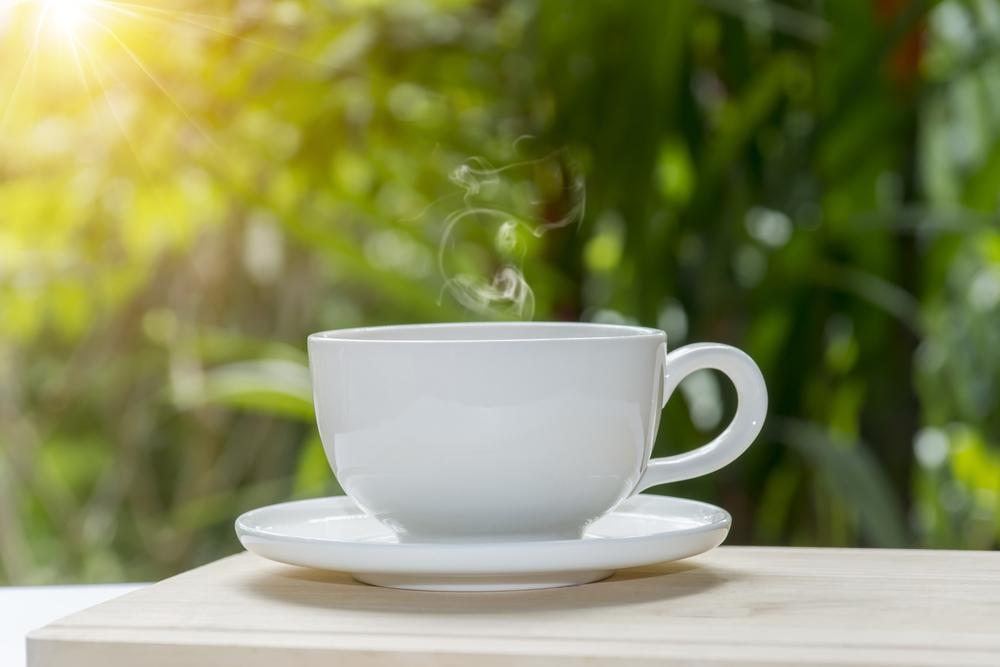 Teetasse im Grünen